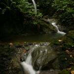 Waterfall on the El Remanso conservancy. © Daniel Beltrá