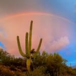 Catalina S.P. Arizona