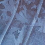 Ice Pattern    at Natural Bridges National Monument Utah.